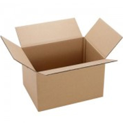 Regular Slotted Container Boxes (RSC Boxes)