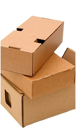 Customisable Packaging Solutions